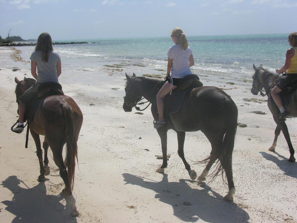 horseriding in the beach, Bahamas