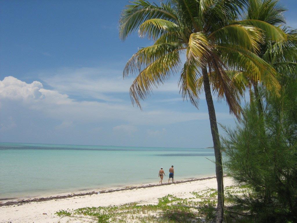 tropical beach, Bahamas