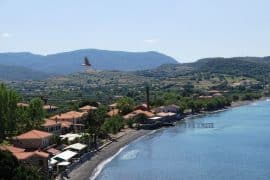 The shores around Lesvos are now clean