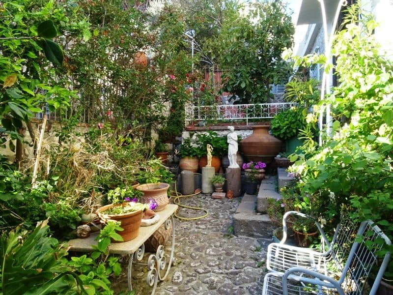 a beautiful garden in Molyvos