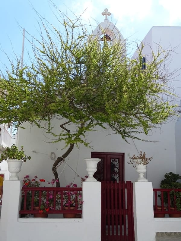 church in Mykonos