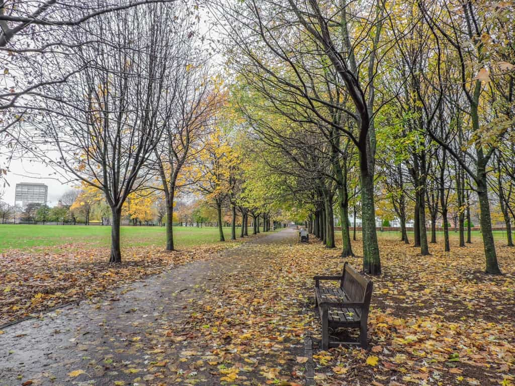 Glasgow Green Park - Things to do in Glasgow