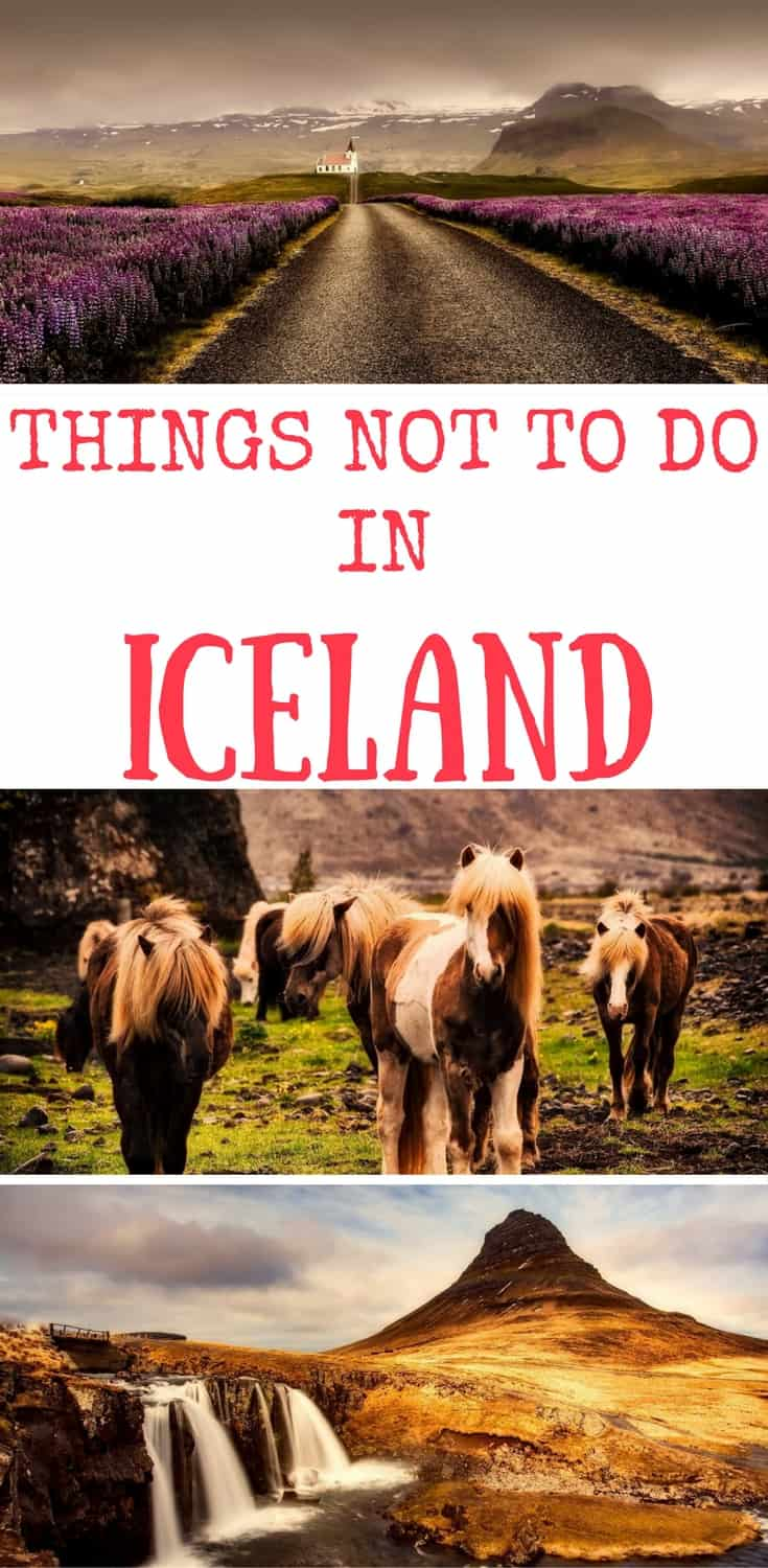 Iceland is a bucket list destination for many. If you are planning to travel to Iceland or a road trip to Iceland here are the top things not to do in Iceland Things to avoid in Iceland