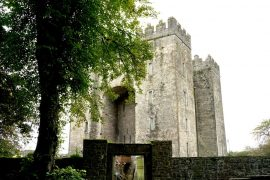 Bunratty Castle - Things to do in Shannon, Ireland