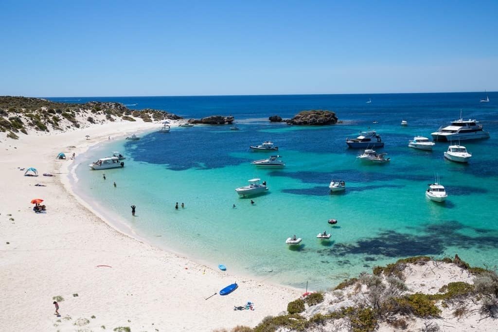 Rottnest Island -The best day trips from Perth, Australia