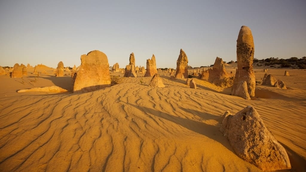 Pinnacles Desert at Nambung National Park -The best day trips from Perth, Australia