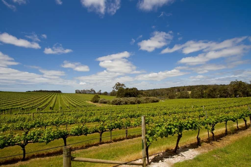 Margaret River, Australia - The best day trips from Perth, Australia