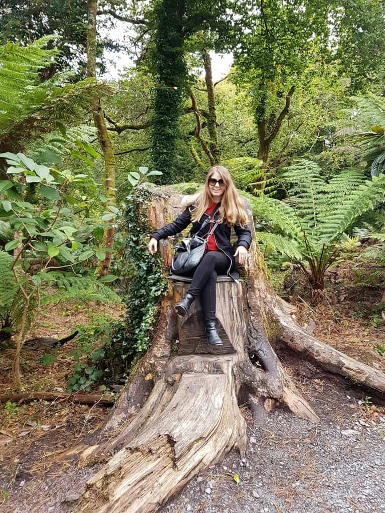The Kells Bay Gardens - Ring of Kerry: The Dingle & Skellig Coast day trip from Killarney