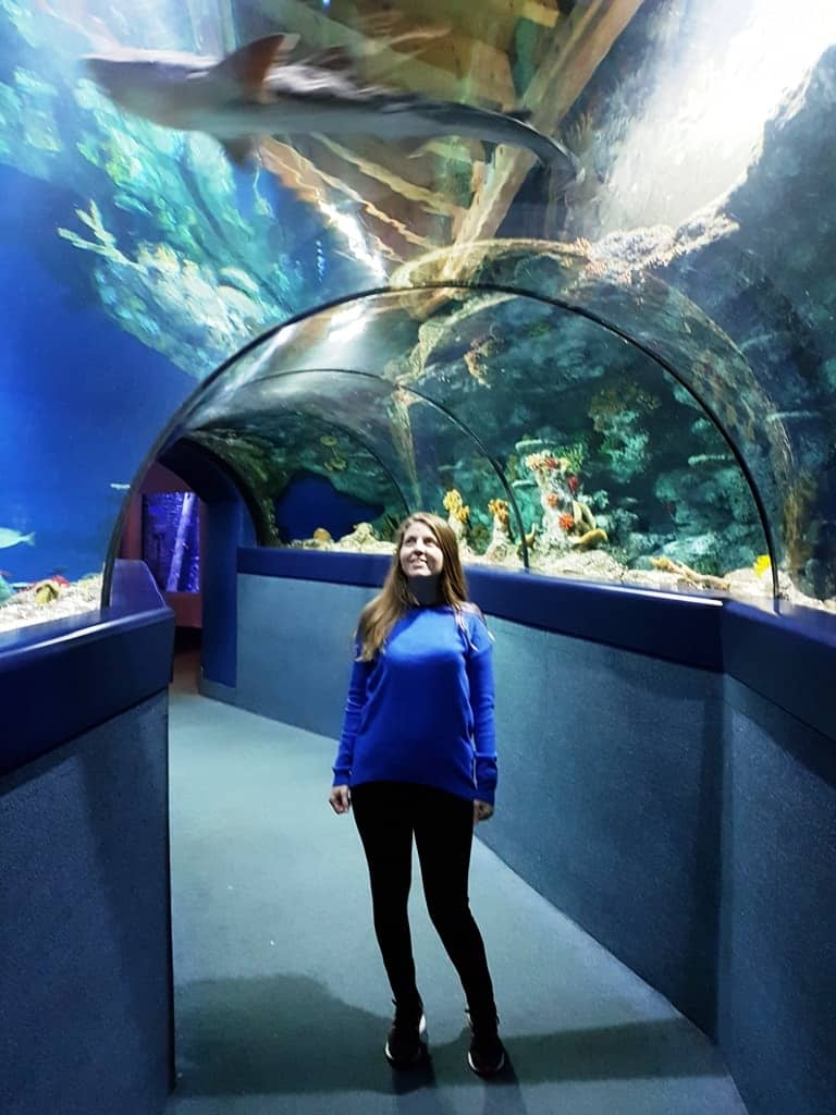 a weekend in Bristol Aquarium