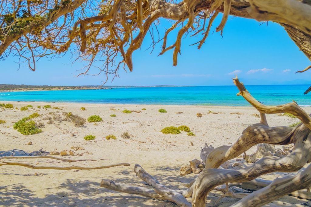 Chrissi (Chrysi) island
