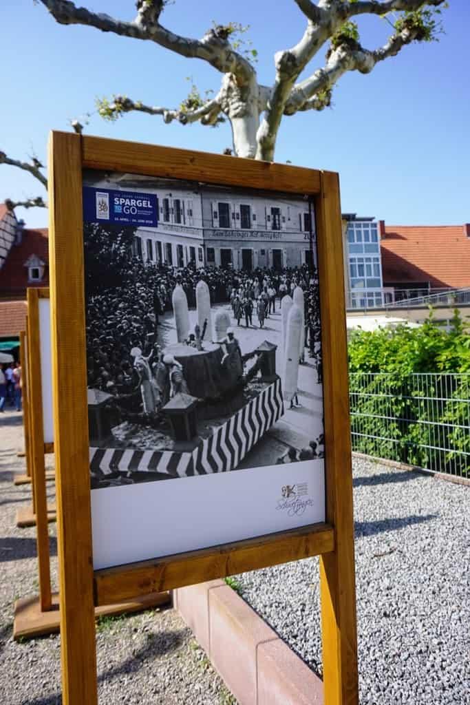 Schwetzingen asparagus festival