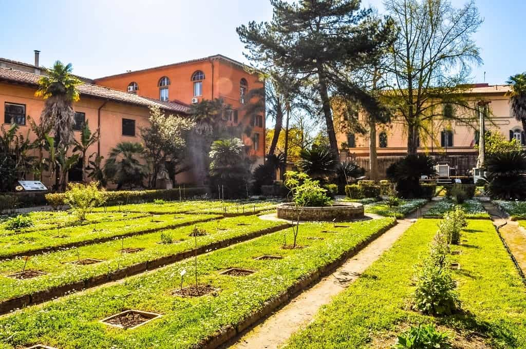 Botanical Gardens of Pisa - One day in Pisa