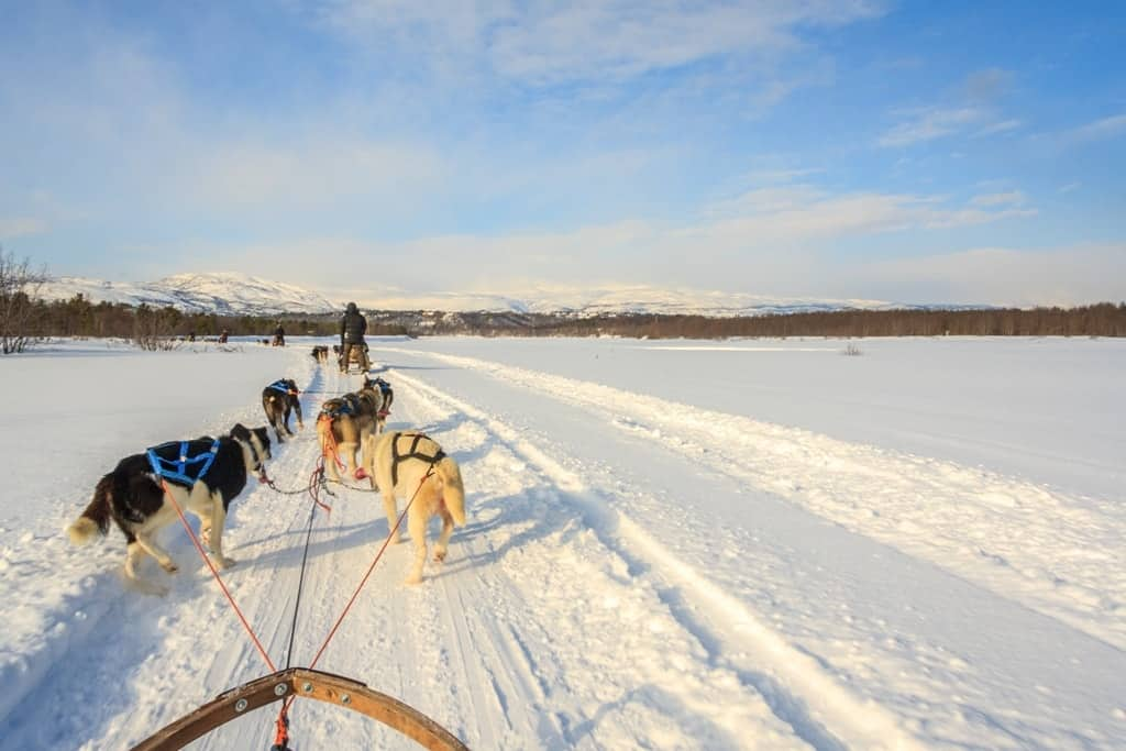 Things to Do in Norway in Winter