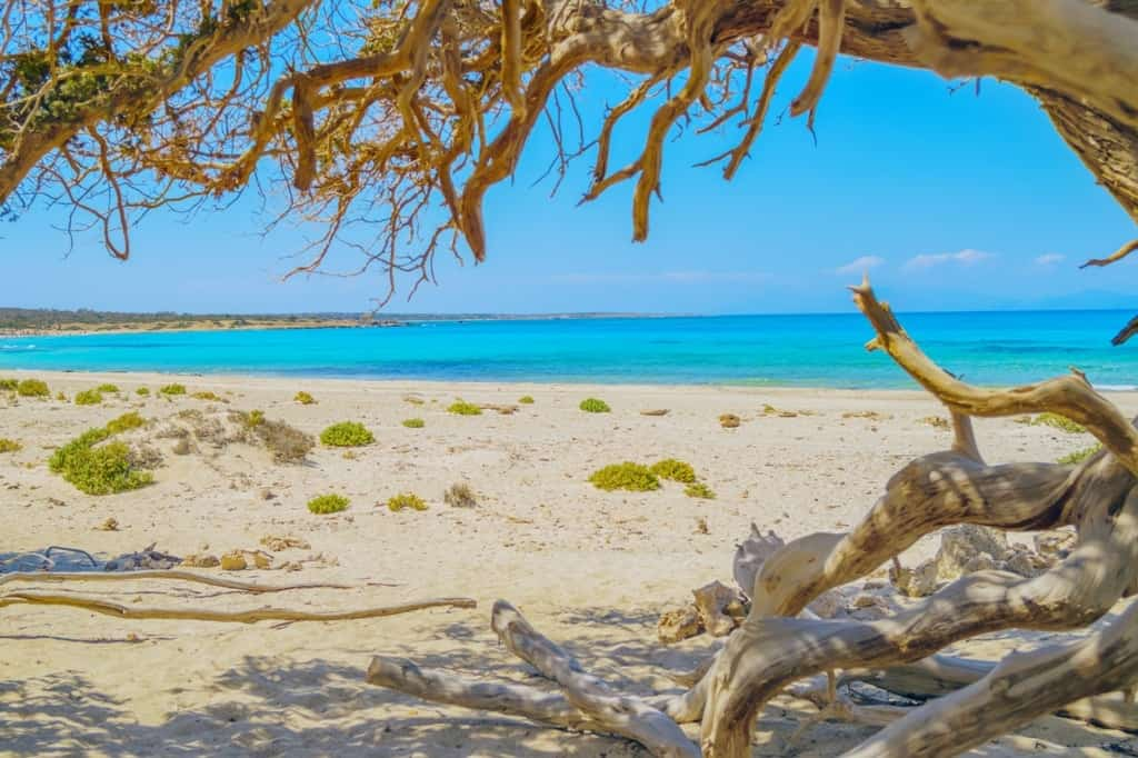 best places to stay in crete, Chrissi Island