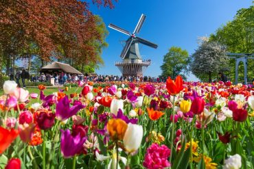 Keukenhof Gardens - Best Places to Visit in Spring in Europe