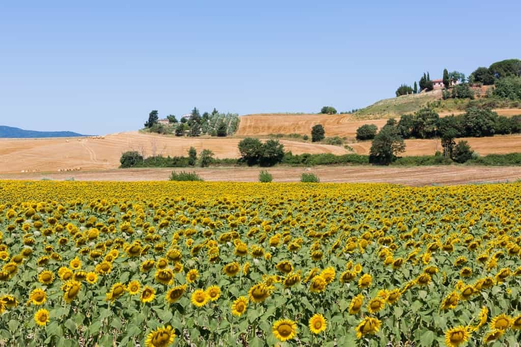 Tuscany is a great place to visit in Europe in Julyin