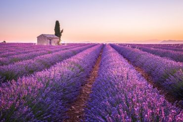 Best places to visit in July in Europe - Provence