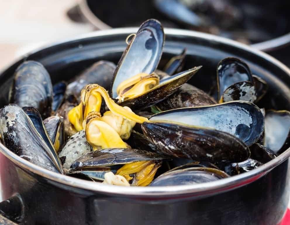 Belgian steamed mussels