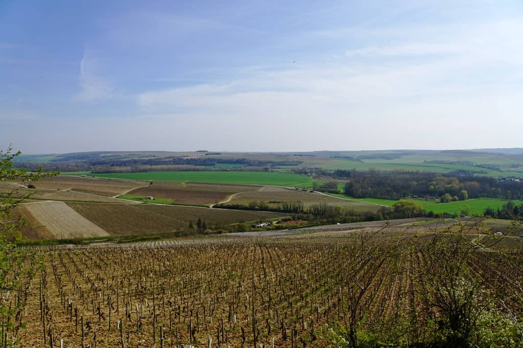 view of the Chablis vineyards-The Chablis wine region in Burgundy