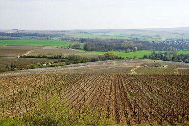 The Chablis wine region in Burgundy