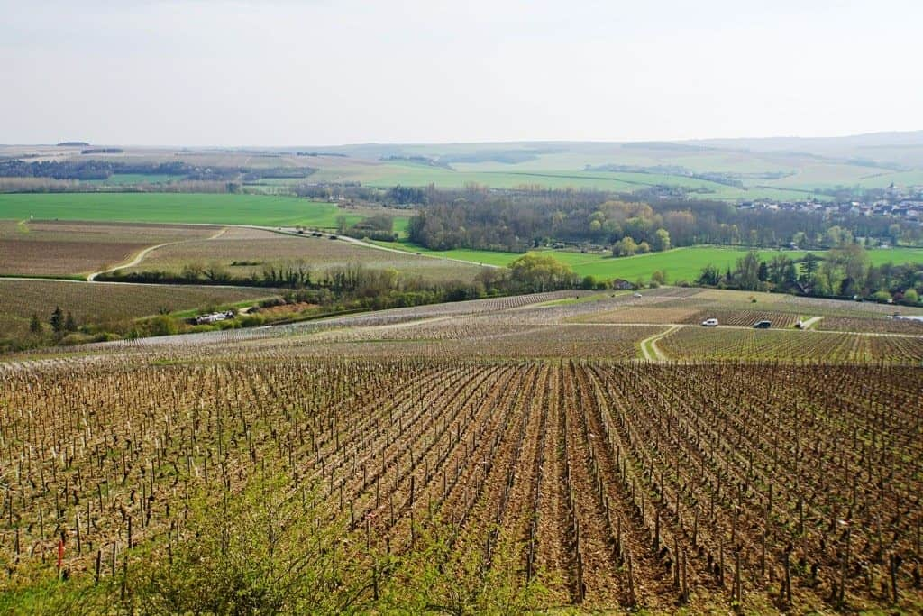 The Chablis wine region in Burgundy