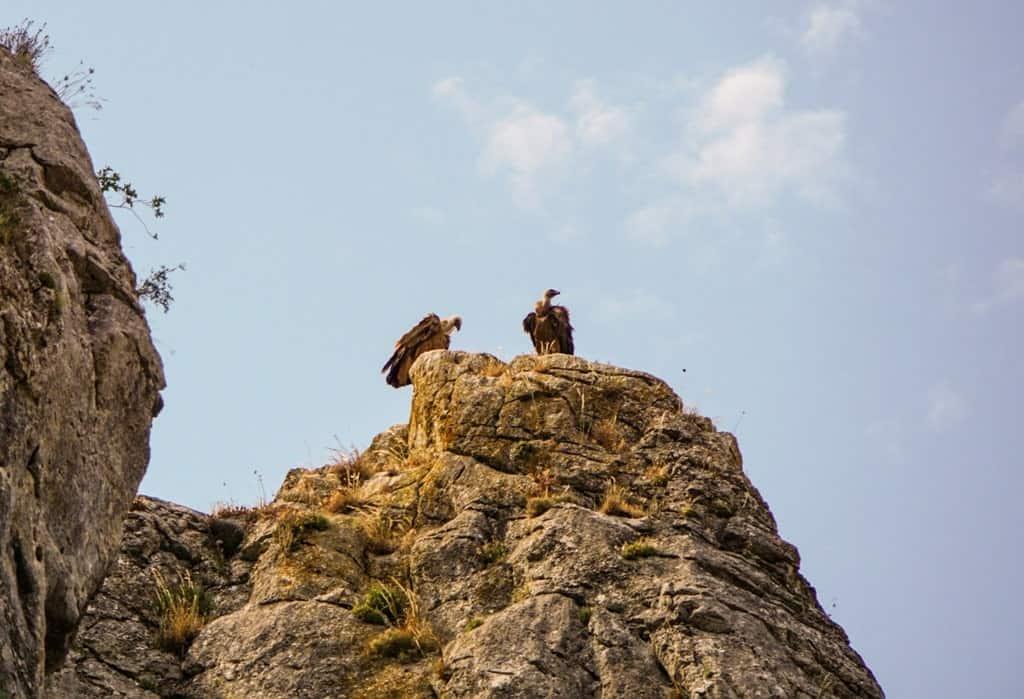 La Yecla Natural Park Spain