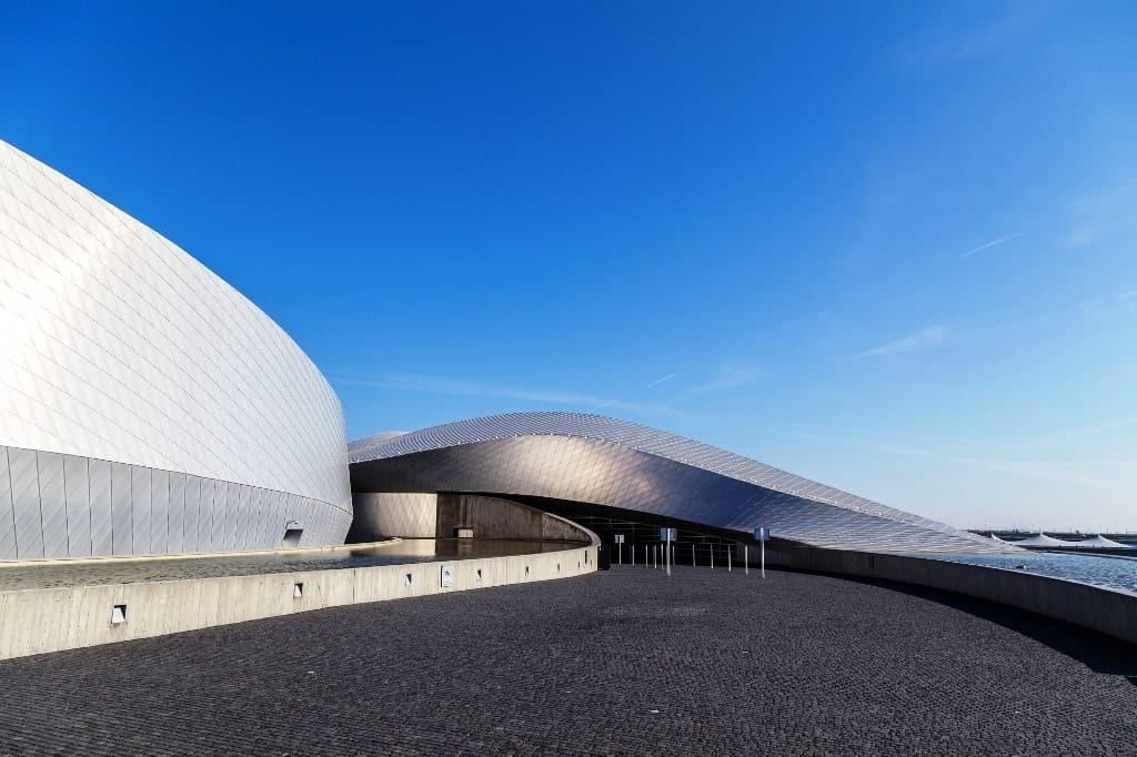 National Aquarium Denmark - things to do in Copenhagen with kids