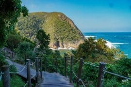 Tsitsikamma National Park Garden Route in South Africa