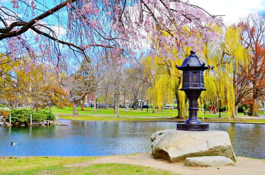 Boston public gardens - Boston in a day