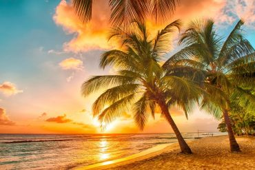 Barbados - Warm places to go in January