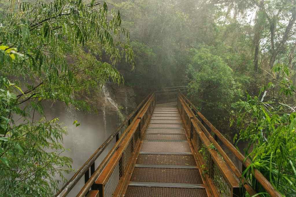 Macuco trail Iguazu Argentina