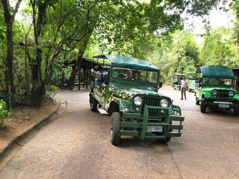 Macuco Safari - Iguazu falls Brazil